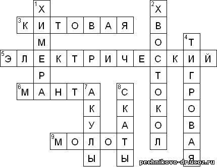 """"""",""""pechnikovo-dr.ucoz.ru"""